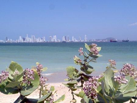 Veja o que fazer em Cartagena! Passeios e dicas imperdíveis para seu roteiro!