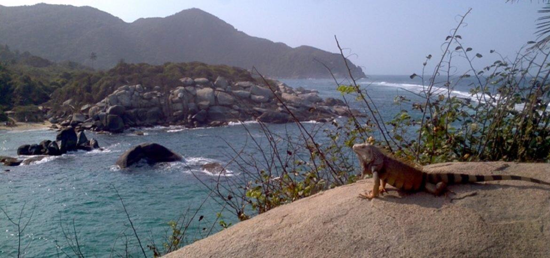 praia-taganga