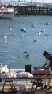 o que fazer em punta del este pescador