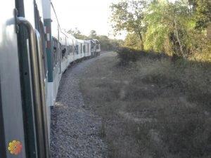 trem da morte andando