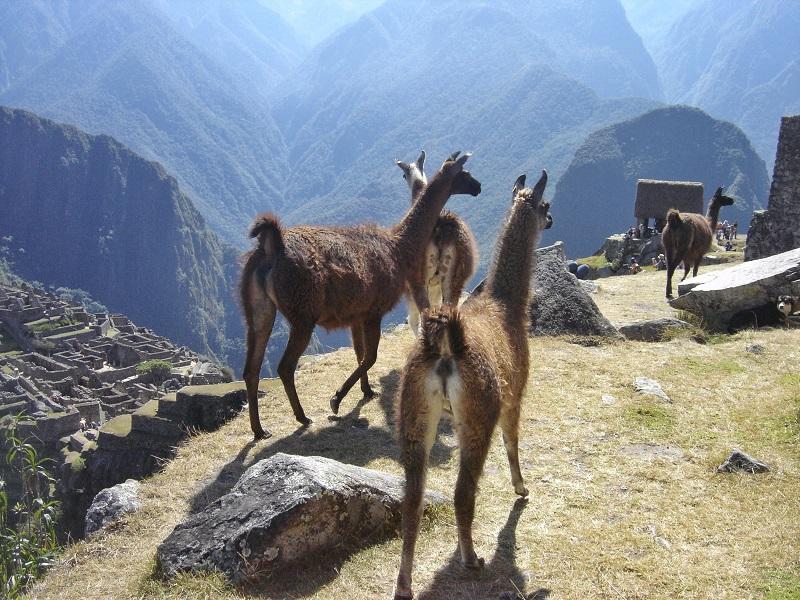 como ir para Machu Picchu
