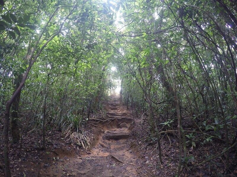 trilha pedra bonita