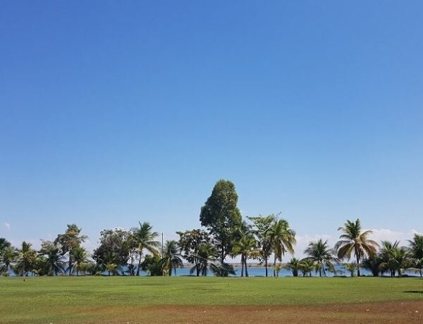 Ilha da Canela, um pequeno paraíso no meio de Palmas!