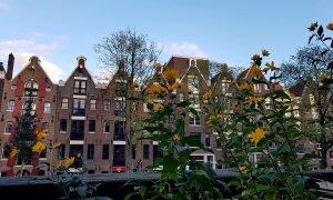 Organizando sua viagem para Amsterdam? Veja um roteiro completo de 3 dias!