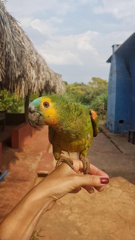 excursão no Jalapão