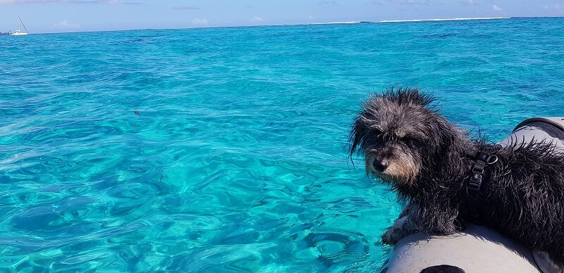 bote na Polinésia