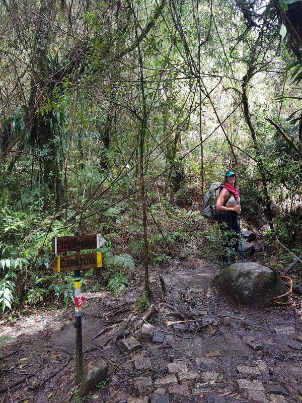 trekking do pico paraná placas