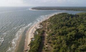 O que fazer na Ilha do Marajó, um destino incrível no Pará