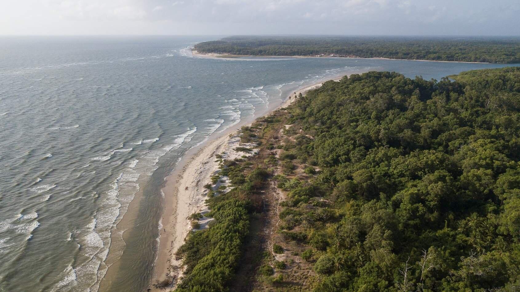 Image result for Ilha de Marajó, Pará