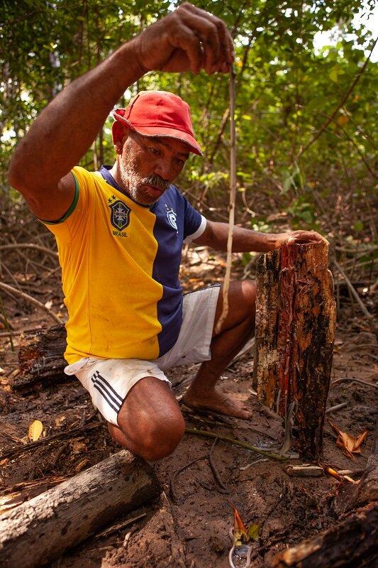 o que fazer na ilha do marajó turu