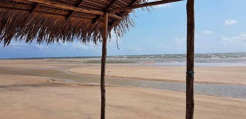 o que fazer na ilha do marajó mangue seco