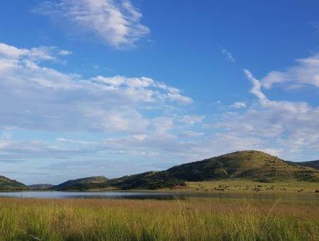 Parque Nacional de Pilanesberg, um safari pertinho de Joanesburgo
