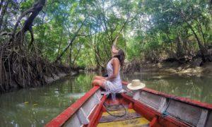 6 motivos para você ir visitar o Pará e se encantar