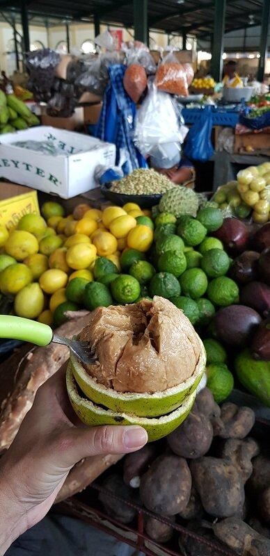capital de moçambique fruta tipica