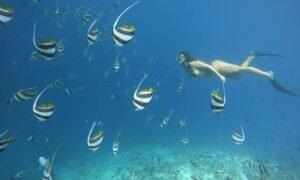 Dhangethi, a ilha certa para você economizar nas Maldivas