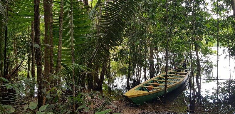 roteiro 7 dias na amazonia translado