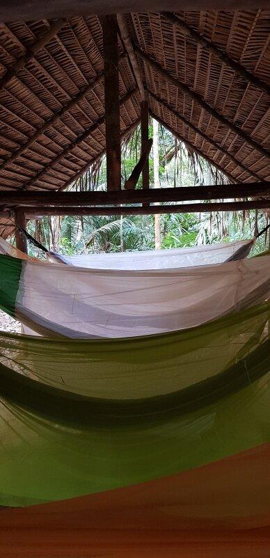 roteiro 7 dias na amazonia na selva