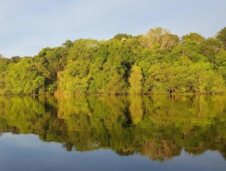 Roteiro de 7 dias na Amazônia: rios, cachoeiras e selva amazônica