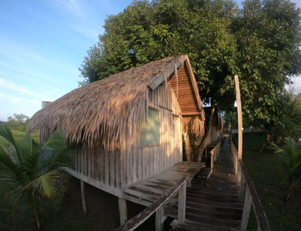 Hotéis na Selva Amazônica – 5 coisas que você precia saber