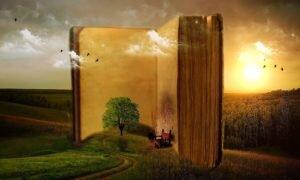 Viaje dentro de casa: 10 dicas de livros sobre viagem