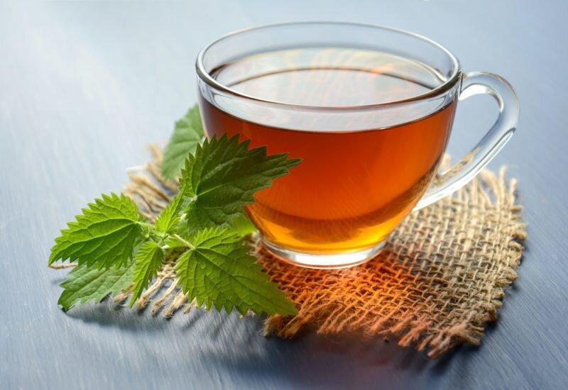 chá de menta na viagem