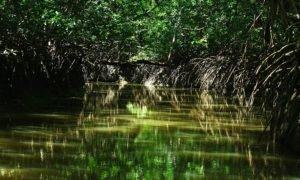 Onde se hospedar no Delta do Parnaíba – o paraíso do Piauí