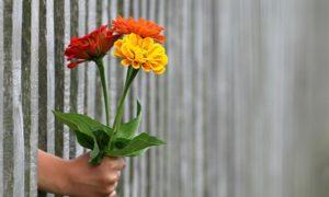 6 ideias para o dia dos namorados na quarentena: viaje no amor!