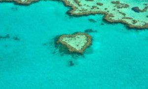 Austrália pontos turísticos: dicas sobre o país tão adorado por brasileiros