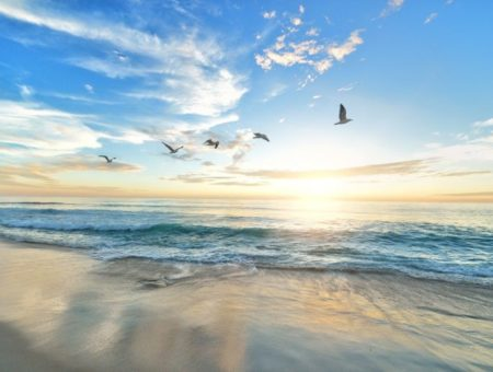 Praias do sul do Brasil: 13 delas que merecem a sua visita!