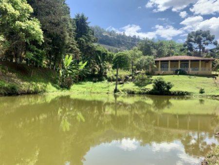 Casas na natureza: 20 opções para alugar e se deslumbrar