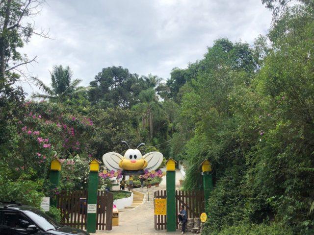parques para crianças em sp cidade das abelhas.